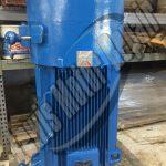 300 HP Vertical Hollow Shaft